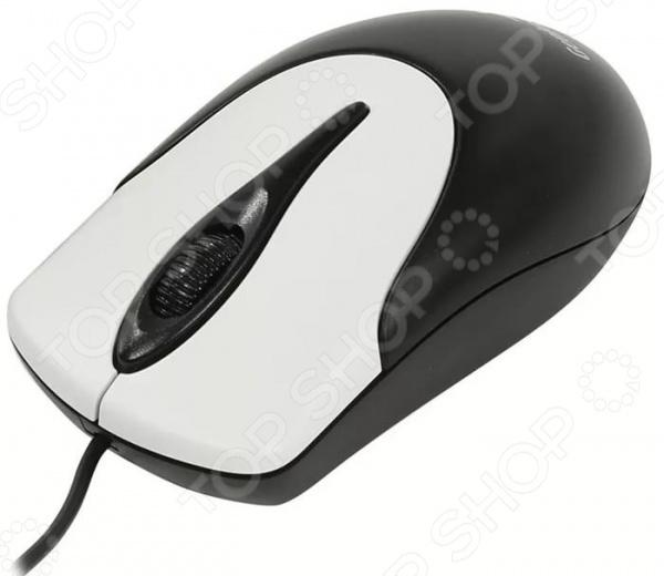 Мышь Genius NetScroll 100 v2 USB