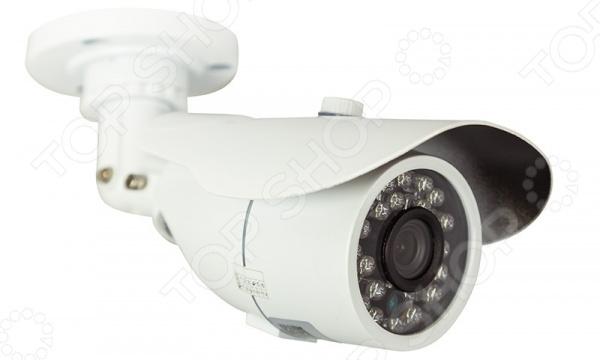 IP-камера уличная цилиндрическая Rexant 45-0255 rexant 45 0257 white камера видеонаблюдения