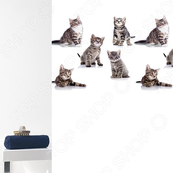 Штора для ванной Bacchetta Kitten
