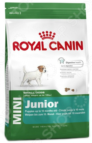 ���� ����� ��� ������ ������ ����� Royal Canin Mini Junior
