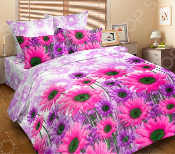Zakazat.ru: Комплект постельного белья DIANA P&W «Сиреневые ромашки». 2-спальный