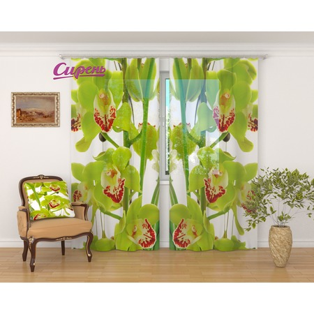 Купить Фототюль Сирень «Зеленая орхидея»