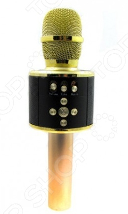 Микрофон для караоке MD-01    /Золотистый