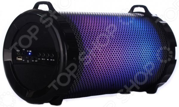 Система акустическая портативная Supra BTS-890 цена и фото
