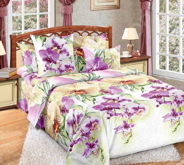 Комплект постельного белья Белиссимо «Мальдивы». 2-спальный