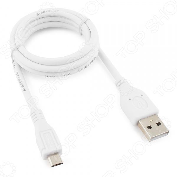 Кабель USB Cablexpert CC-mUSB2-AMBM-1MW