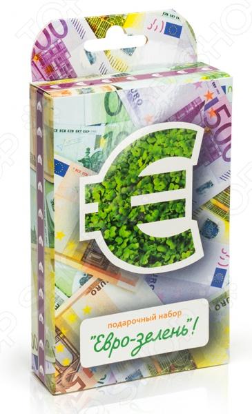 Набор подарочный для выращивания Happy Plant «Живая открытка: Евро-зелень»