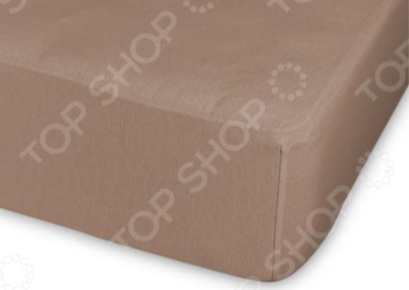 Простыня трикотажная на резинке Cleo гладкокрашеная. Цвет: светло-коричневый простыня на резинке cleo 160х200 см cl
