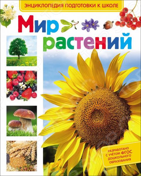 Мир растений разнообразный мир растений