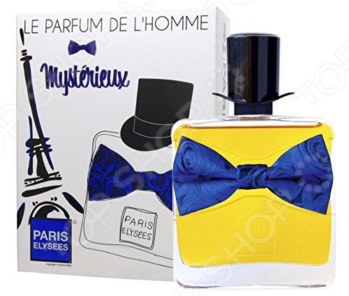 Туалетная вода для мужчин Paris Elysees Le Parfum De L'Homme Mysterieux, 100 мл