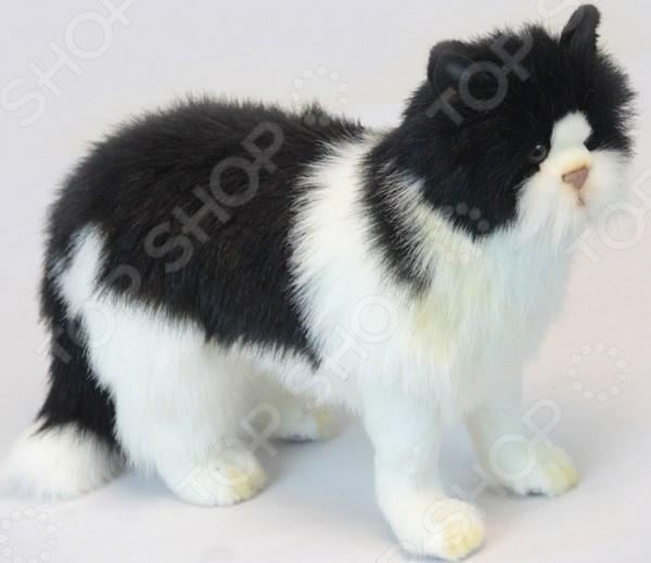 Zakazat.ru: Мягкая игрушка Hansa «Кот черный с белым»