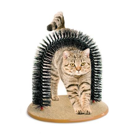 Купить Когтеточка со щеткой «Кошачье удовольствие». Уцененный товар