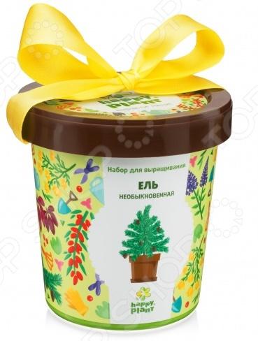 Набор для выращивания Happy Plant «Горшок. Ель необыкновенная»