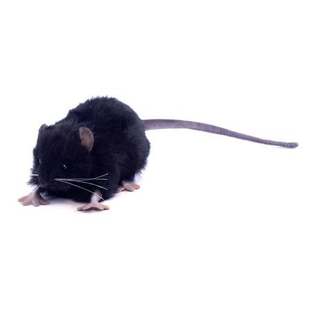 Купить Мягкая игрушка Hansa «Крыса черная»