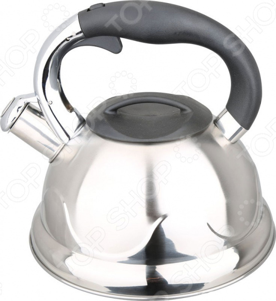 Чайник со свистком Bayerhoff BH-449