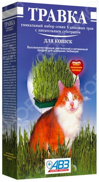Добавка витаминная для кошек Агроветзащита «Травка» АВ204 семена тыква витаминная 10шт