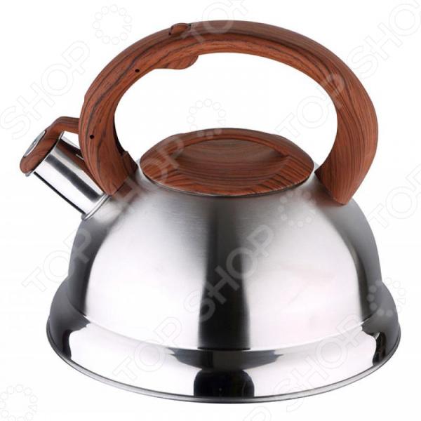 Чайник со свистком Wellberg 6658 WB чайник wellberg wb 3431 f
