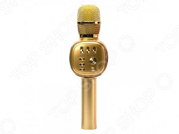 Микрофон для караоке K-310    /Золотистый
