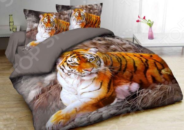 Комплект постельного белья Mango «Тигр». Семейный