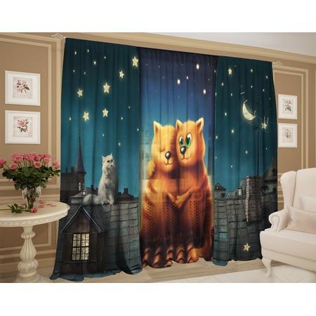 Купить Фотокомплект: тюль и шторы ТамиТекс «Кот на крыше вместе»