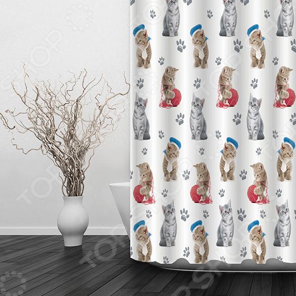 Штора для ванной Dasch «Котята» полуперсидские котята в москве