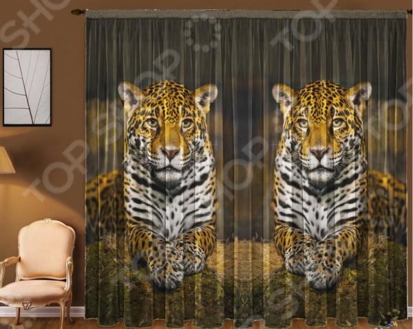 Уютная комната это не только мягкие диваны и кресла, но и красивый домашний текстиль. Именно он позволяет создать в комнате приятную и теплую атмосферу! Легкий летящий тюль это незаменимый элемент в текстильном оформлении окна. Он не уменьшает количество естественного света в помещении, а позволяет сделать его немного мягче. Этот простой элемент домашнего текстиля способен преобразить комнату, сделав её немного уютней, светлее и больше. Новинка в мире фотоштор Фототюль Zlata Korunka Леопард станет отличным решением для вашего дома! Он одинаково удачно и выигрышно будет смотреться как в вашей спальне, так и в гостиной или гостевой комнате. Отлично впишется в любой интерьерный стиль: классический, модерн или смешанный. Легкий и тонкий тюль выполнен из шифоновой ткани высочайшего качества. Этот материал традиционно используется для этого вида домашнего текстиля.  Достоинства тюля из шифона  Переплетение синтетических нитей делает его очень прочным и износостойким.  Гладкая поверхность практически не блестит на солнце, поэтому тюль приобретает благородный внешний вид.  Легко подается драпировке за счет своей легкой и пластичной структуры ткани.  Прекрасно пропускает солнечный свет.  Не выгорает на солнце и не теряет свой цвет после многочисленных стирок.  Легкий уход. Для неповторимого уюта в любой комнате! Благодаря изысканному дизайну с реалистичным фоторисунком, данная модель может использоваться в качестве самостоятельного украшения окна. Яркий и красочный рисунок придется по нраву тем, кто предпочитает более современный дизайн. Парящий тюль придаст нежность и воздушность интерьеру, избавит вас от ощущения загруженности интерьера, визуально увеличит помещение и сделает более комфортным для отдыха. Тюль рекомендуется стирать при температуре 30 С в режиме бережной стирки и гладить при температуре 150 С в режиме шелк .