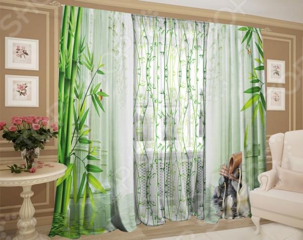 Фотокомплект: тюль и шторы ТамиТекс «Бамбуковые заросли»