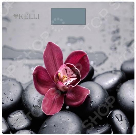 Весы Kelli KL-1521 цена и фото