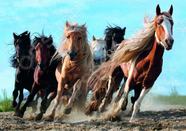 Пазл 1000 элементов Trefl «Кони в галопе» анатолий федорович кони памяти д в григоровича
