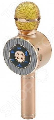 Микрофон для караоке 1741974. В ассортименте