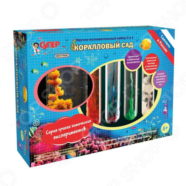 Набор для экспериментов Qiddycome «Коралловый сад»