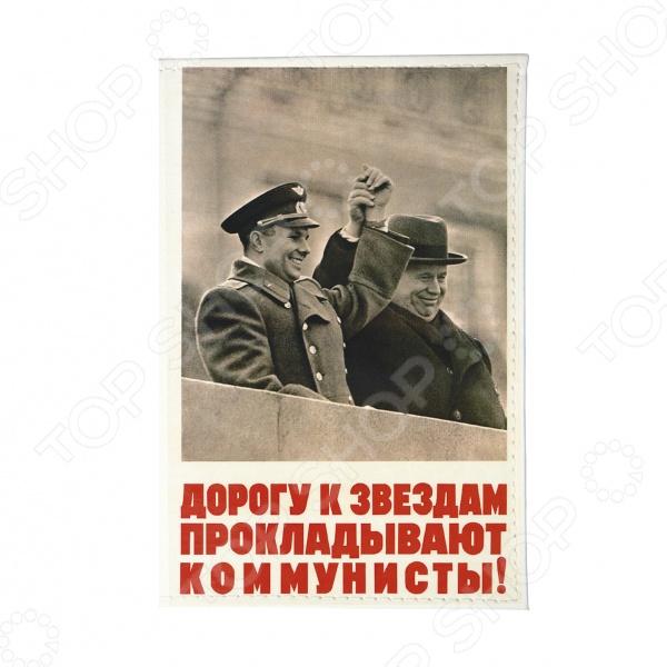 Обложка для автодокументов кожаная Mitya Veselkov «Дорога к звездам»