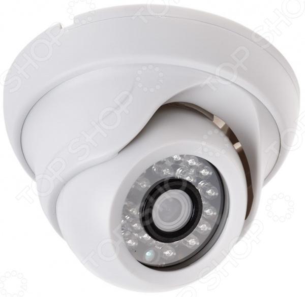 IP-камера купольная Rexant 45-0258