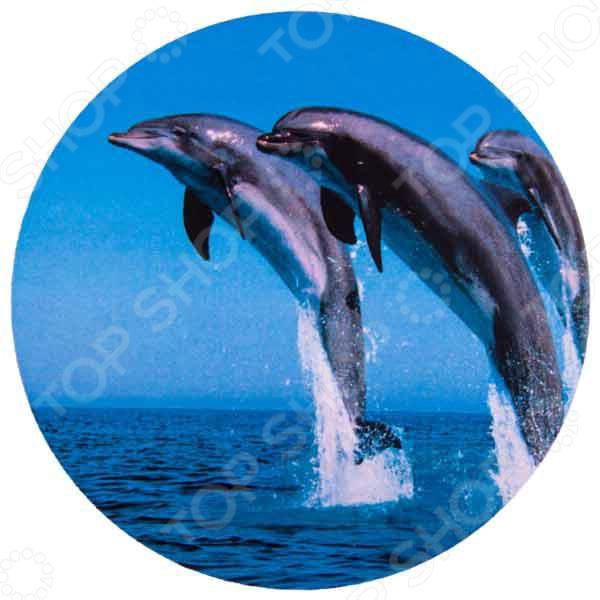 Чехол для запасного колеса SKYWAY «Дельфины» чехол для запасного колеса skyway пантера