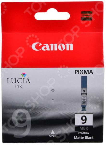 Картридж Canon PGI-9MBk цена 2017