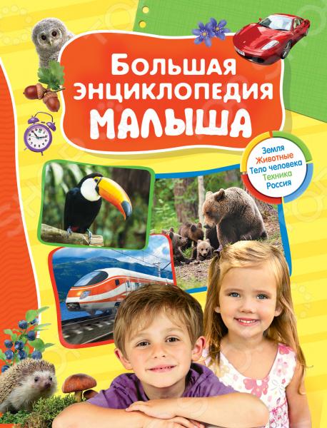 Книги Росмэн 978-5-353-08172-2 г п шалаева название детенышей и способы передвижения животных isbn 978 5 17 064673 9 978 5 8123 0676 2
