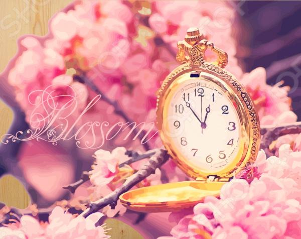 Набор для рисования по номерам Color Kit «Время цветения сакуры»