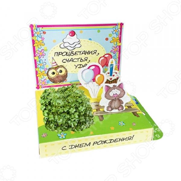 Набор подарочный для выращивания Happy Plants «С Днем рождения! Котик» набор подарочный для выращивания happy plants живая открытка букет роз
