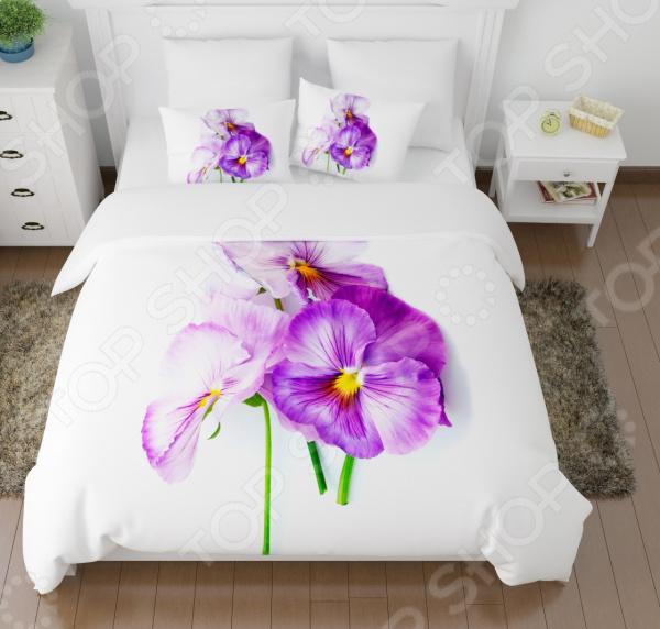 Комплект постельного белья Сирень «Виола необыкновенная»
