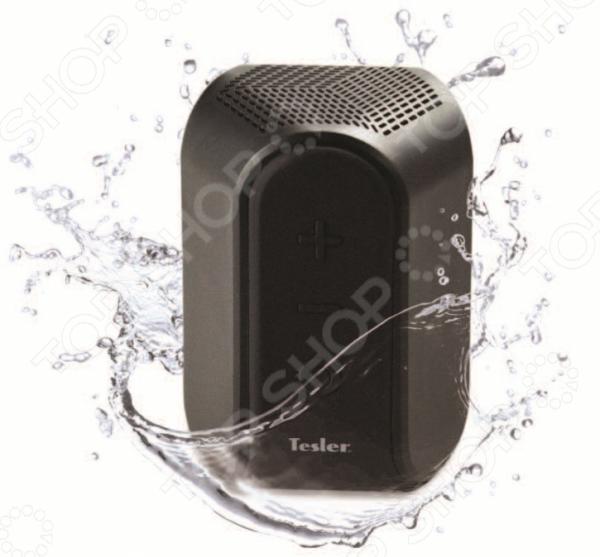 Система акустическая портативная Tesler PSS-222
