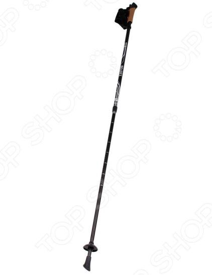 Палки для скандинавской ходьбы Bradex Nordic Style II 3