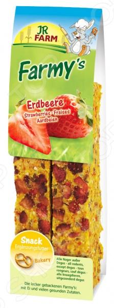 Лакомство для грызунов JR Farm Snack Erdbeere