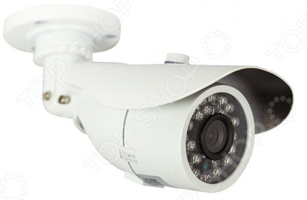 Камера видеонаблюдения цилиндрическая уличная Rexant 45-0261 Камера видеонаблюдения цилиндрическая уличная Rexant 45-0261 /