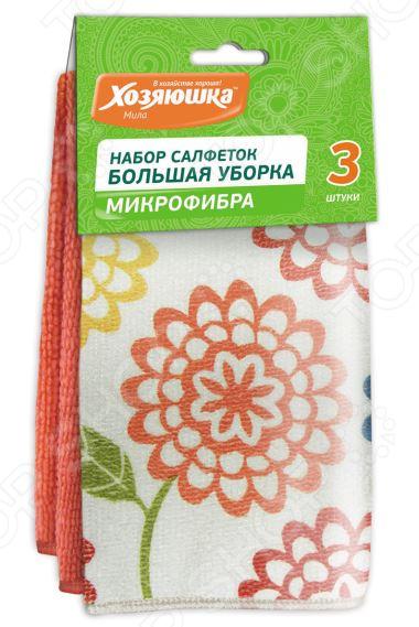 Набор салфеток чистящих Хозяюшка «Мила» 04038 цена