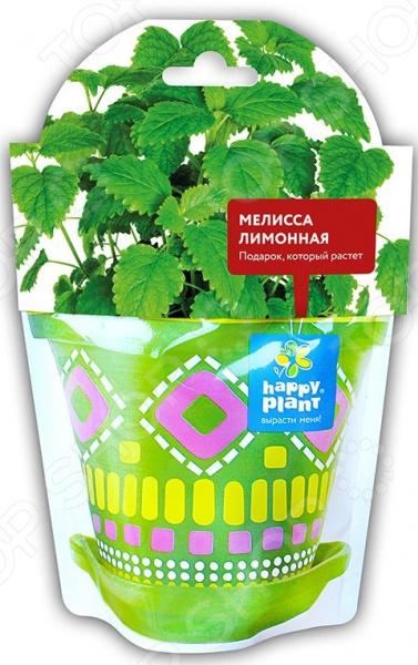 Набор для выращивания Happy Plant «Мелисса лимонная» набор для опытов и экспериментов happy plant горшок мелисса лимонная