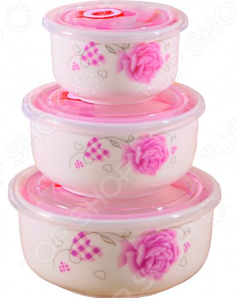 Набор контейнеров для хранения продуктов Irit IRH-321C «Домашняя роза» Irit - артикул: 1589765