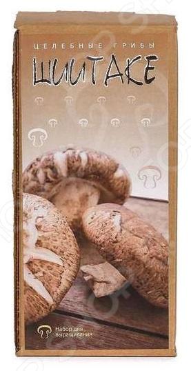 Набор для выращивания грибов «Шиитаке»