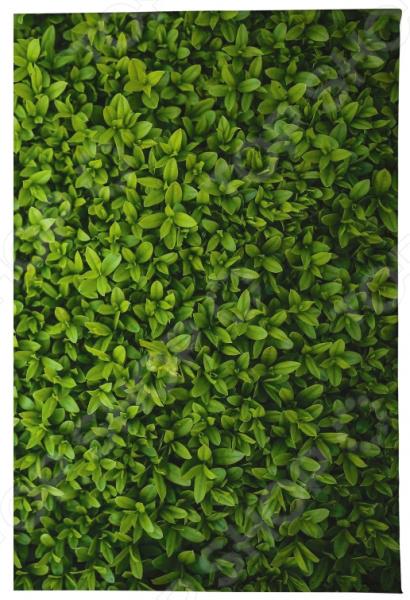 Обложка для автодокументов Mitya Veselkov «Травушка» платье quelle my size 1026046