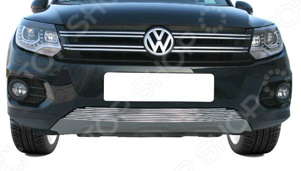 Фото - Декоративные элементы воздухозаборника Souz-96 Volkswagen Tiguan / Track&Field / Track&Style 2011 авто