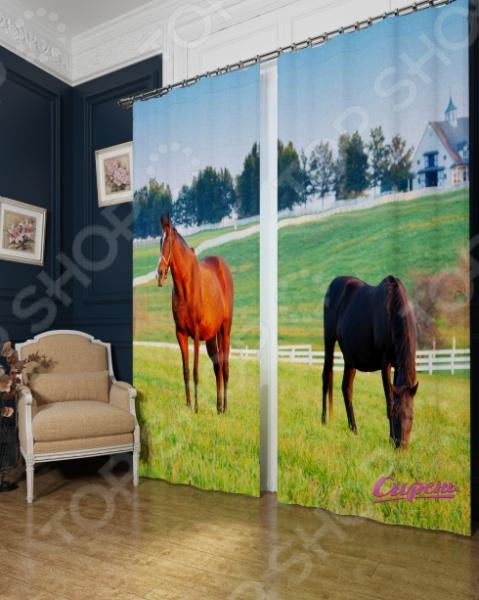Фотошторы Сирень «Лошади в поле» фотошторы поле